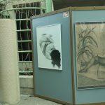 zdjęcia zekspozycji, montaż wystawy